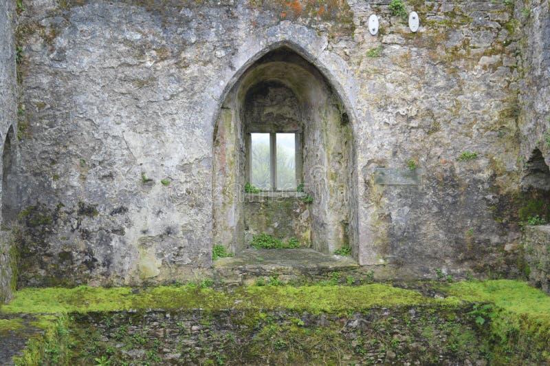 blarneyslott ireland royaltyfria bilder