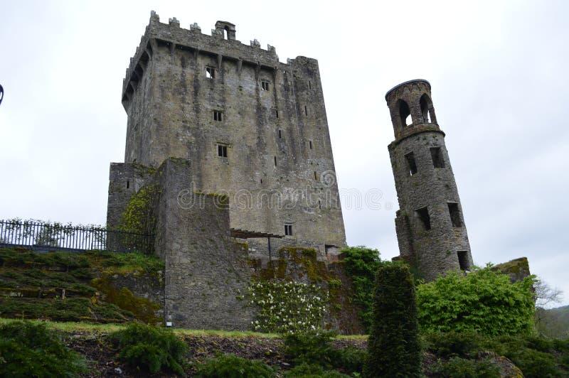 blarneyslott ireland arkivbilder