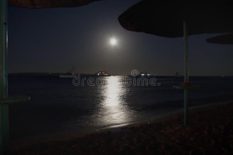 Blask księżyca ścieżka zdjęcie royalty free