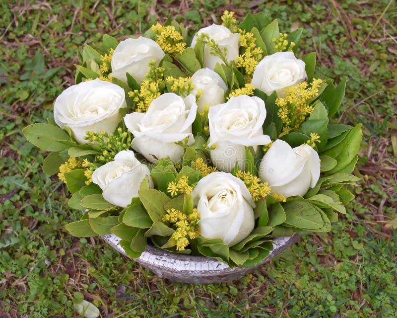 Blasse Weißrose blüht Blumenstrauß auf grünem natürlichem Hintergrund stockbilder