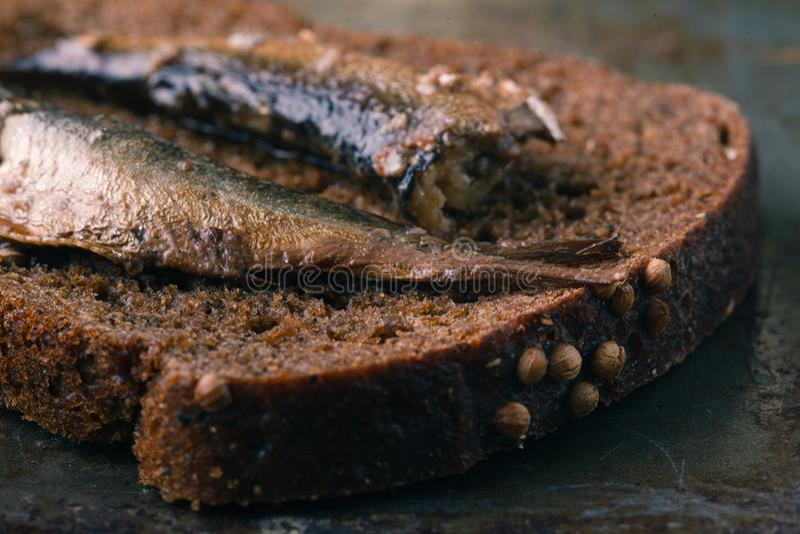 Blaszana sardynka na darda tle z chlebem fotografia royalty free