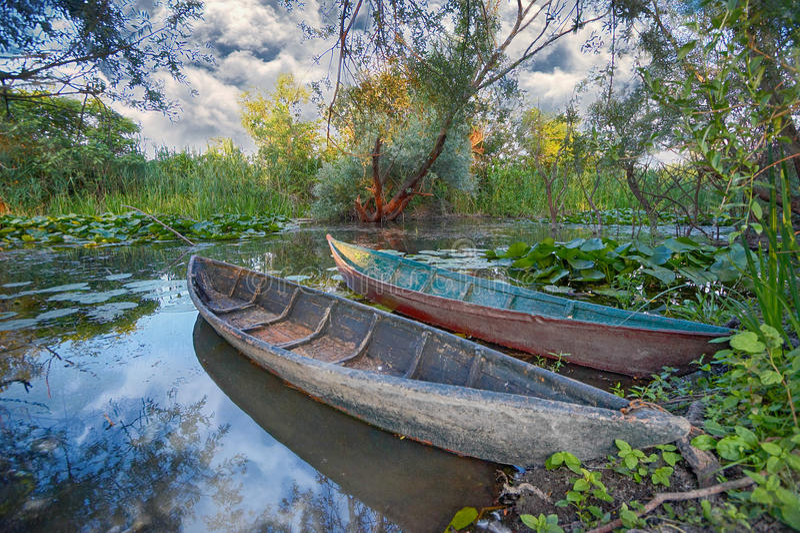 Blato van Hutovo van het aardpark, Bosnië-Herzegovina stock afbeelding