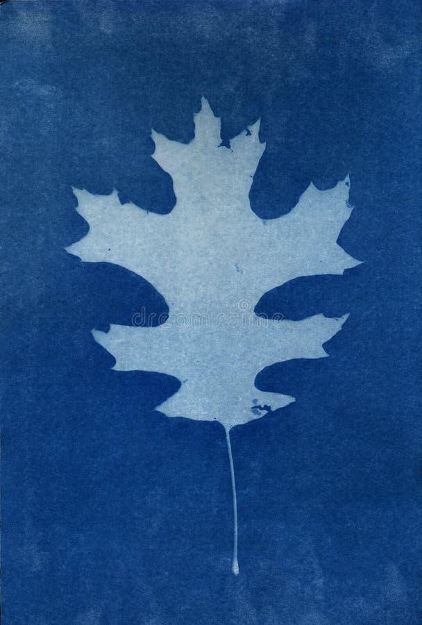 Blatt-Hintergrund 2 lizenzfreie abbildung