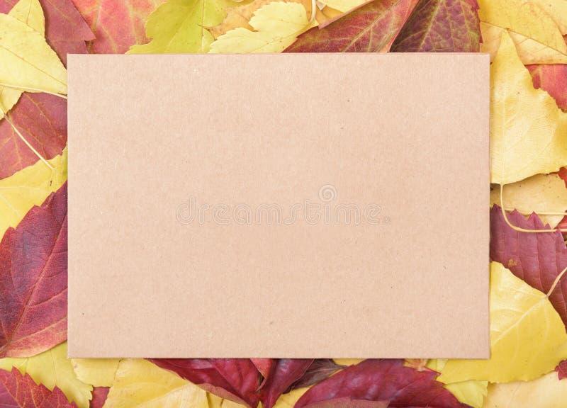 Blatt Papier auf Herbstlaub stockfotografie