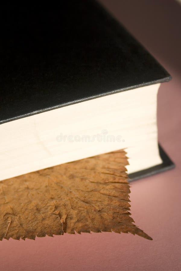 Blattbookmark stockbild