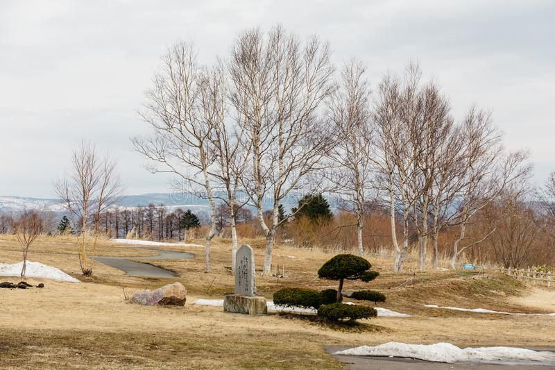Blattlose Bäume mit braunem Gras auf dem Land nahe See Toya im Winter in Hokkaido, Japan lizenzfreies stockfoto