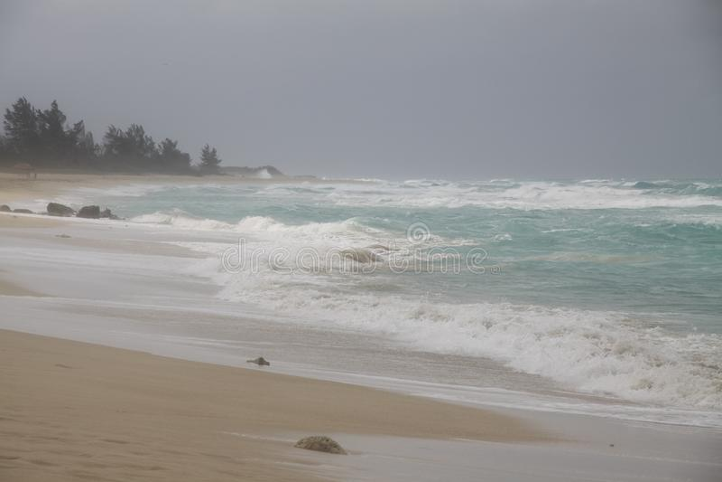 Blau bewegt tropischen Sturmstrand wellenartig stockfotografie