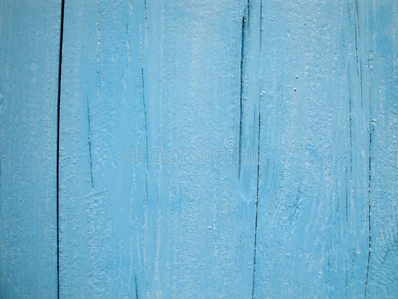 Blau, gr?n, Aqua, Knickente lizenzfreie stockfotos