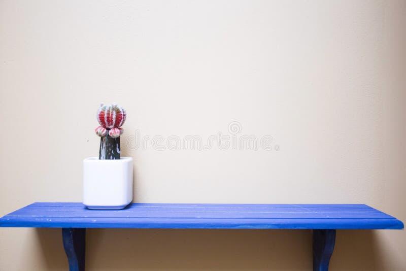 Blau legt mit Kaktus auf dem modernen Design der Wand beiseite stockbilder