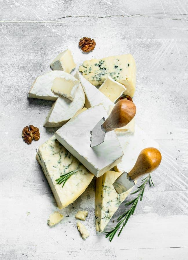 Blau und Brie mit Rosmarin lizenzfreies stockfoto