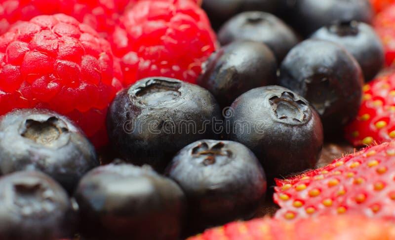 Blaubeere, Himbeere, Erdbeere-Makromischung stockbilder