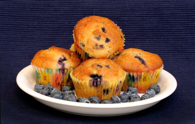 Blaubeere-Muffins auf Blau stockfoto