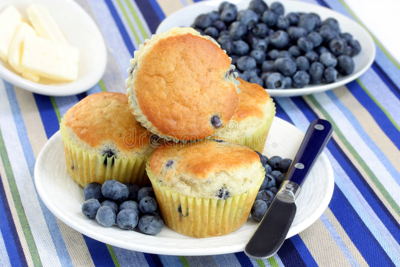 Blaubeere-Muffins mit frischen Blaubeeren stockfotografie