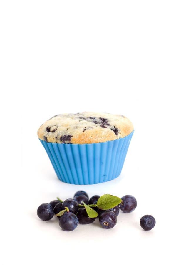 Blaubeere und Muffin lizenzfreies stockbild