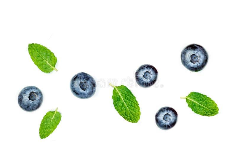Blaubeeren getrennt auf weißem Hintergrund Frische Blaubeerfrüchte stockbild