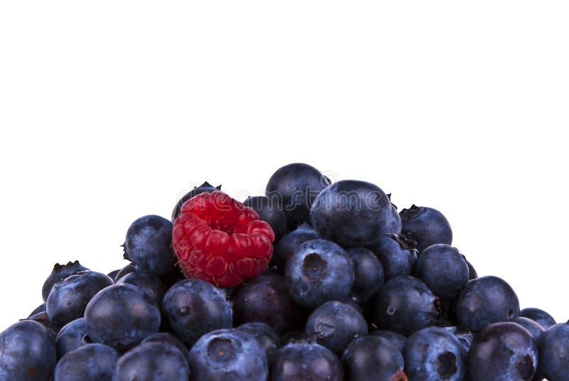 Blaubeeren und Rasberry getrennt mit Ausschnitts-PA stockfoto
