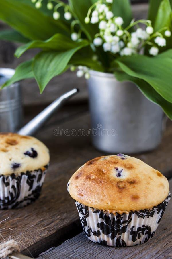 Blaubeermuffins im Papierhalter des kleinen Kuchens lizenzfreies stockbild