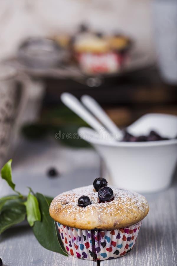 Blaubeermuffins mit Puderzucker stockbilder