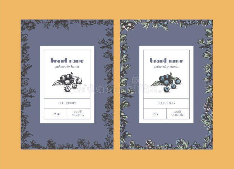 Blaubeervertikale Blumenverpackungsschablonen lizenzfreie abbildung