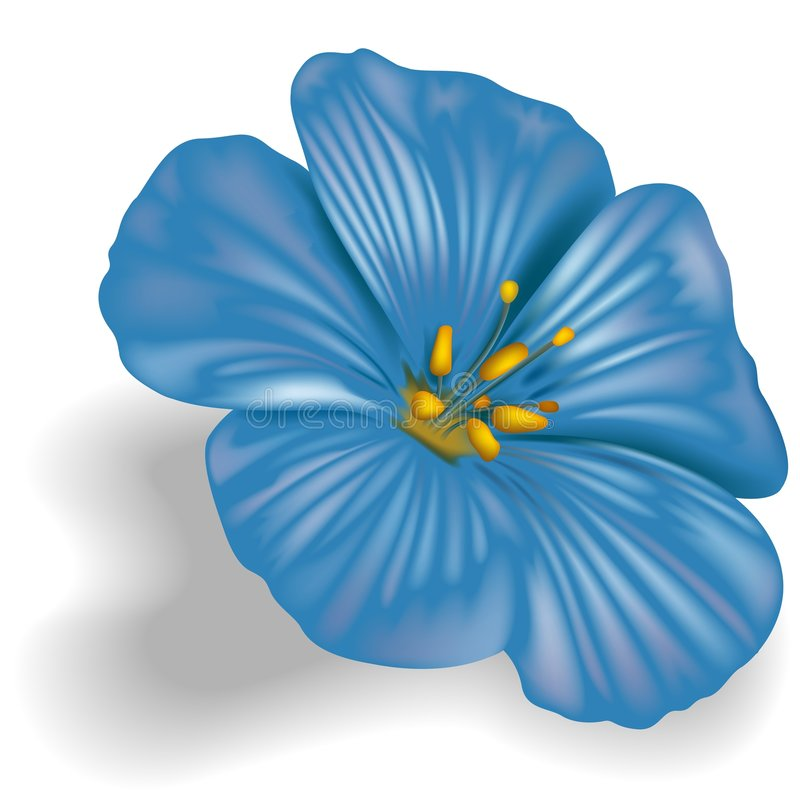 Blaue Blume lizenzfreie abbildung