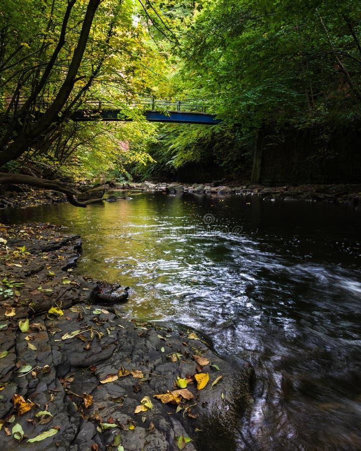 Blaue Brücke - Skelton Beck - Herbst - Cleveland Way lizenzfreies stockfoto