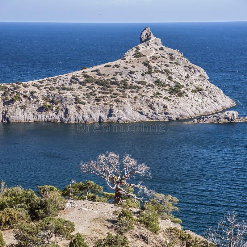 Blaue Bucht mit dem königlichen Strand Reliktwacholderbusch- und -kiefernwaldungen lizenzfreie stockfotos
