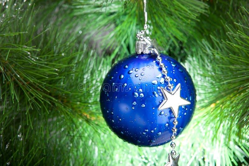 Kugel Für Tannenbaum.Blaue Cristmas Kugel Auf Tannenbaum Stockfoto Bild Von Hell Grün