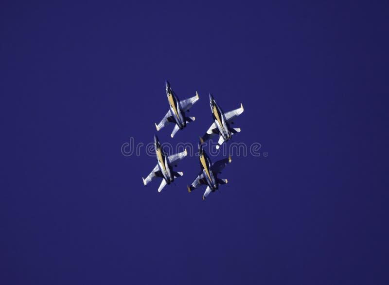 Blaue Engel im Flug stockfoto
