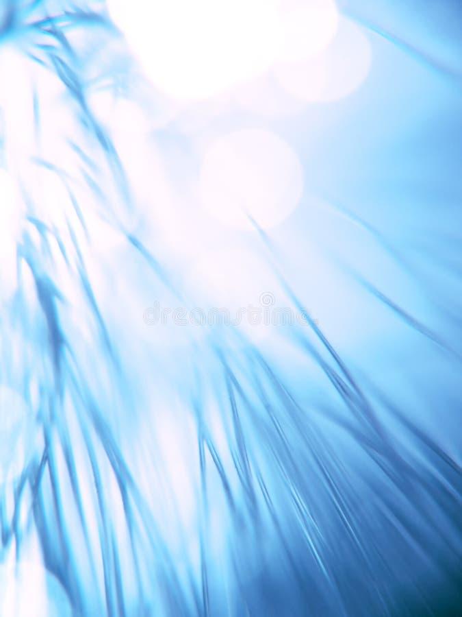 Blaue Faseroptikstränge vektor abbildung