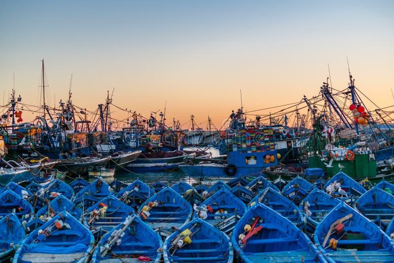 Blaue Fischerboote im Hafen von Essaouira, Marokko lizenzfreie stockbilder