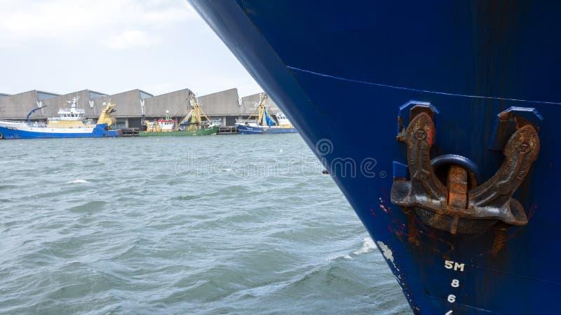 Blaue Fischerboote liegen in Scheveningen-Hafen lizenzfreie stockfotos