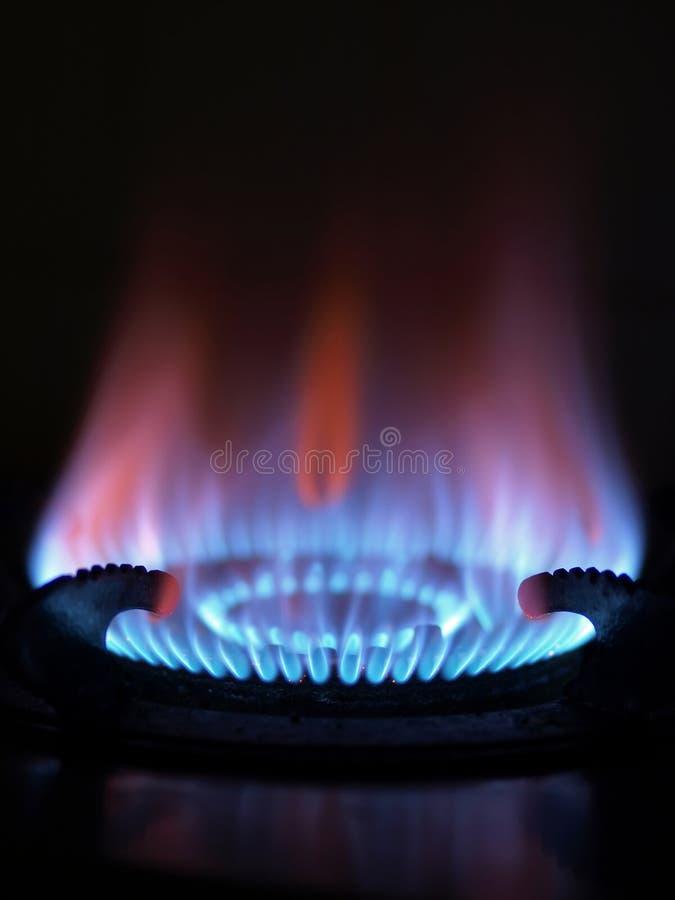 Blaue Flamme lizenzfreie stockfotos