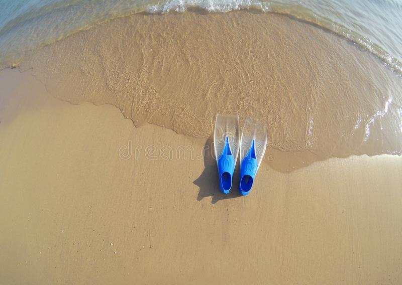 Blaue Flossen am Meer im Sand stockfoto