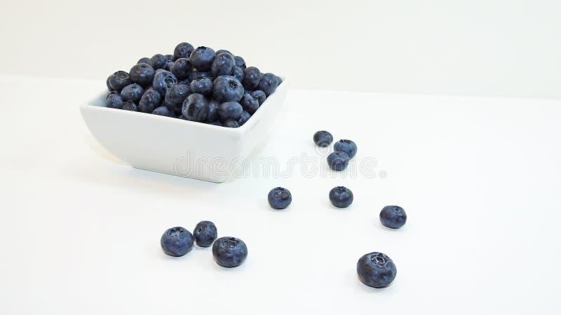 Blaue Heidelbeere stockfotografie