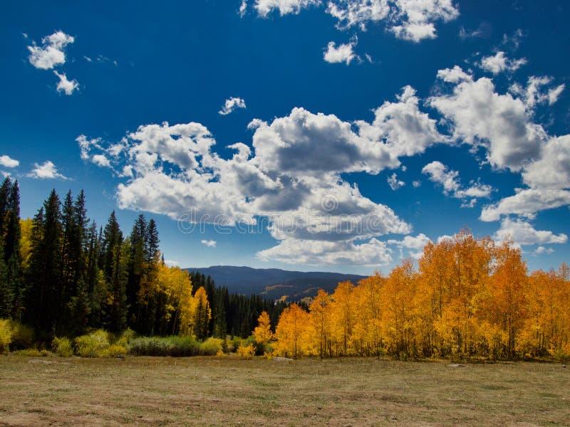 Blaue Himmel im Herbst stockfotos