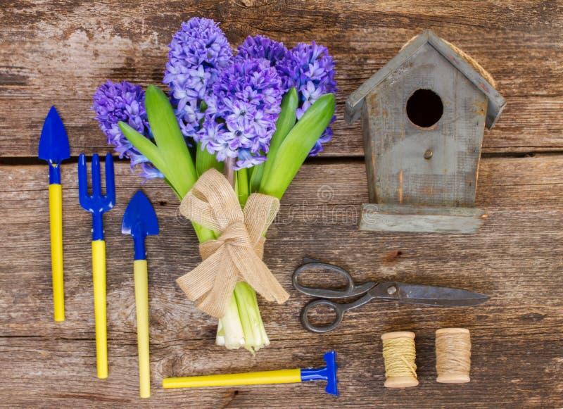 Blaue Hyazinthe und Gartenarbeiteinrichtung lizenzfreie stockbilder