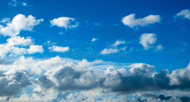 Blaue Kumuluswolken stockfotos