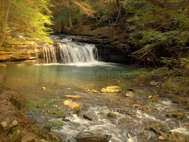 Blaue Loch-Fälle Tracy City, TN lizenzfreie stockfotos