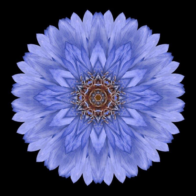 Blaue Mandala Flower Kaleidoscope Isolated auf Schwarzem stockfotos