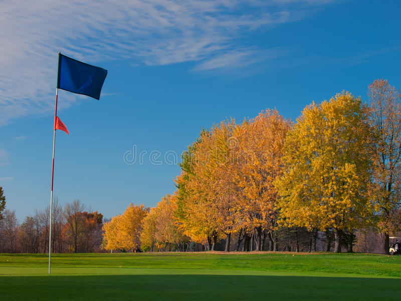 Blaue Markierungsfahne des Golfs auf Grün lizenzfreies stockbild