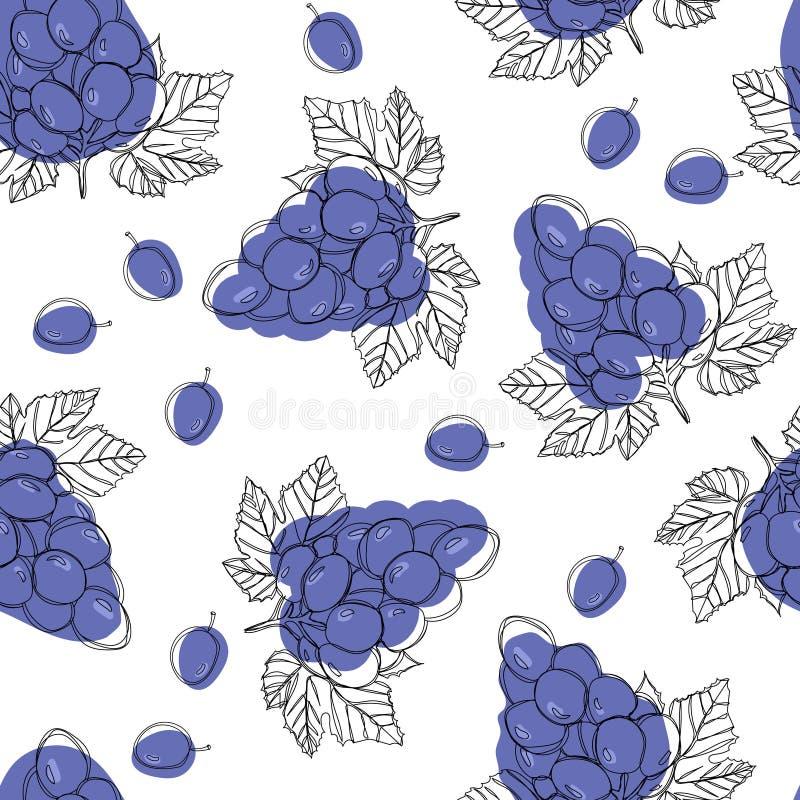 Blaue reife Traubenbeeren, nahtloses Vektormuster lokalisiert auf weißem Hintergrund stock abbildung