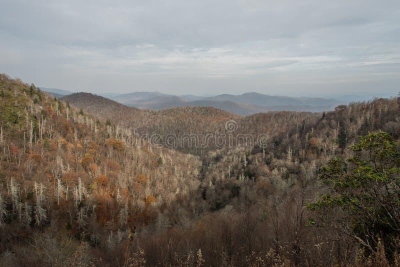Blaue Ridge Parkway-Aussicht im späten Fall lizenzfreie stockbilder