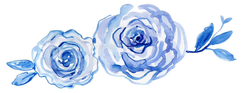 Blaue Rosen Aquarell handgemalt, Weinleseillustration vektor abbildung