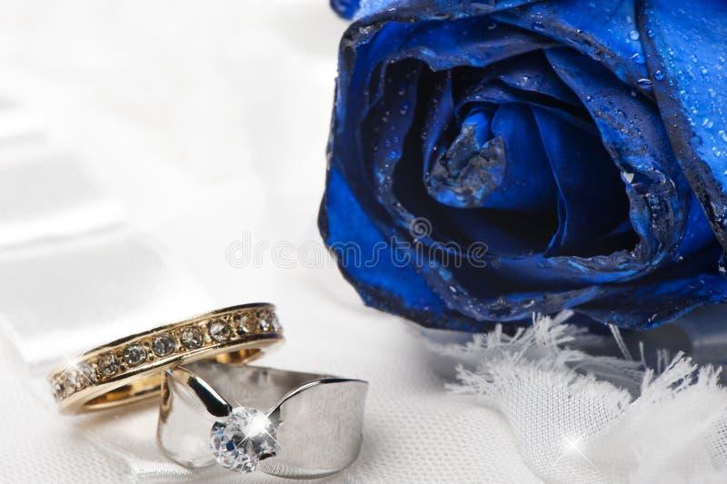 Blaue Rosen und Eheringe lizenzfreie stockfotografie