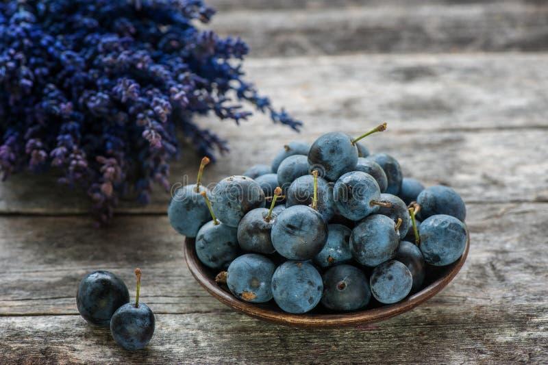 Blaue Schlehenbeeren der Herbsternte auf einem Holztisch mit einem Blumenstrauß des Lavendels im Hintergrund Kopieren Sie Platz R lizenzfreie stockfotos