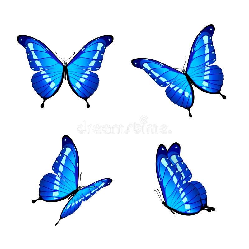 Blaue Schmetterlinge vektor abbildung