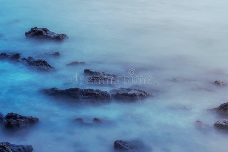 Blaue Seeweichzeichnung lizenzfreies stockfoto