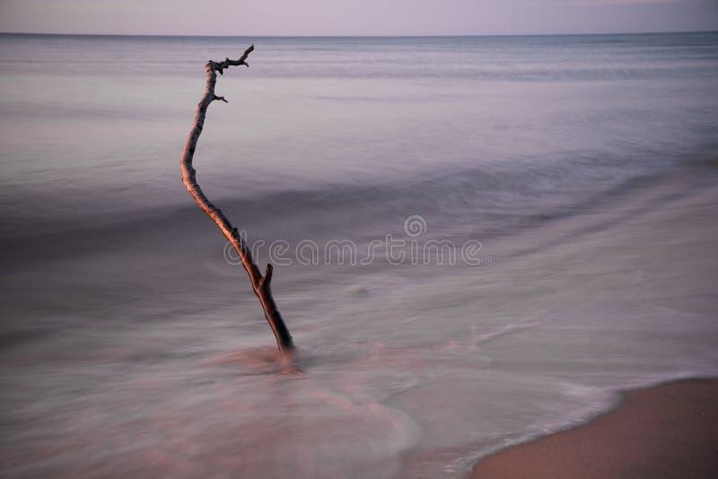 Blaue Stunde durch das Meer lizenzfreies stockfoto