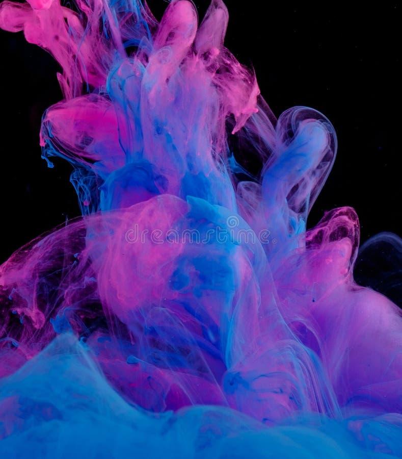 Blaue und rosa Wolken der Tinte in der Flüssigkeit lokalisiert auf Schwarzem lizenzfreie stockfotografie