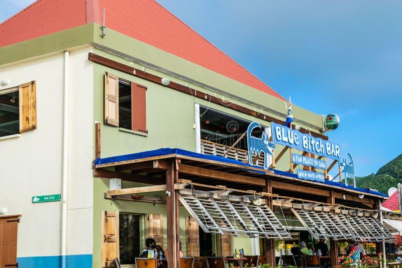 Blaue Weibchen-Stange in Philipsburg Sint Maarten lizenzfreie stockfotografie
